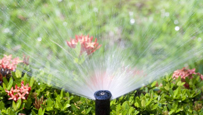 Moana Nursery answers the question - how often does your landscaping need to be watered?