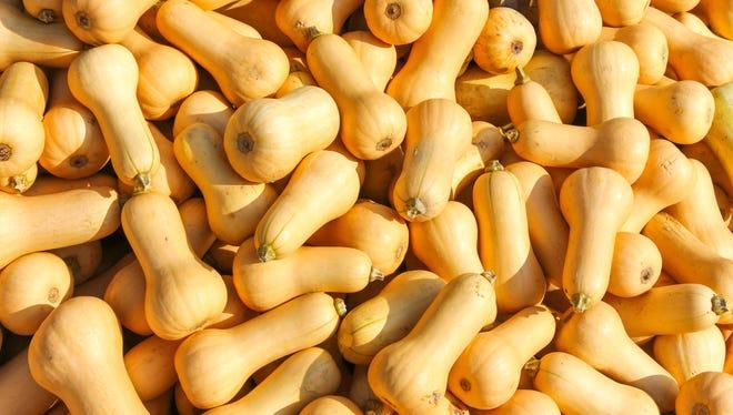 Butternut squash file photo