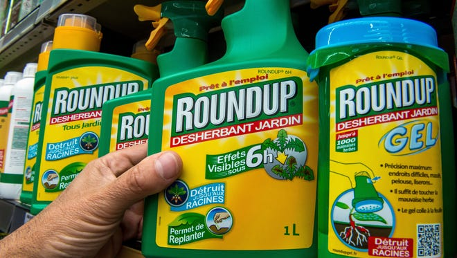 A bottle of Monsanto's 'Roundup' pesticide in a gardening store