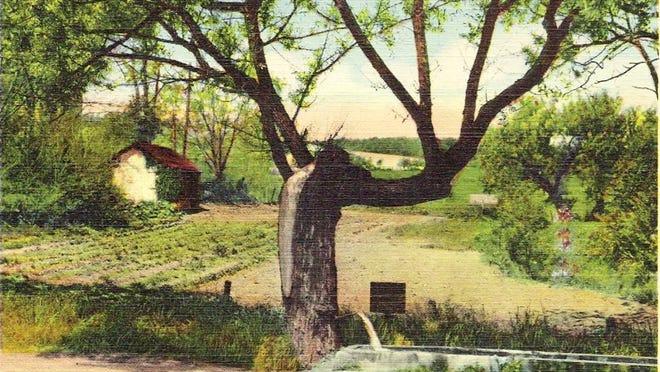 1930s-era postcard of Willow Spout.
