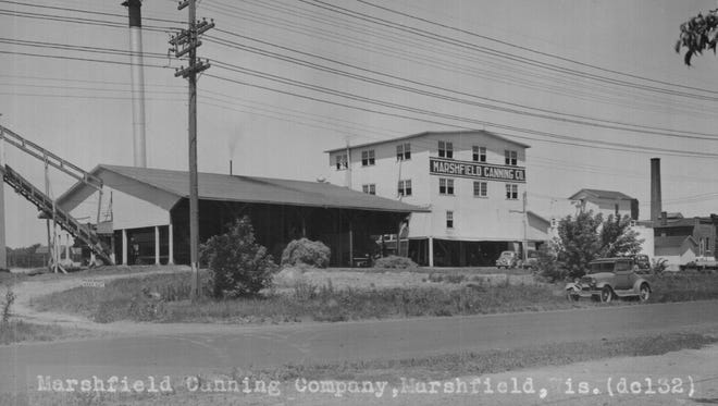 Marshfield Canning Factory in its early days.