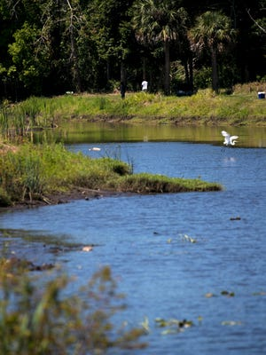 Fishermen walk along the bank of Billy's Creek in Fort Myers on Tuesday, April 17, 2018.