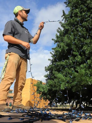 Van Buren Parks and Recreation employee Zach McKenna works to string the more than 19,900 pixel lights around the Freedom Tree, Monday, Nov. 9, in Van Buren's Freedom Park on historic Main Street. The 36-feet tall tree will be topped with a 6-feet tall star and feature animated scenes created by the pixels.