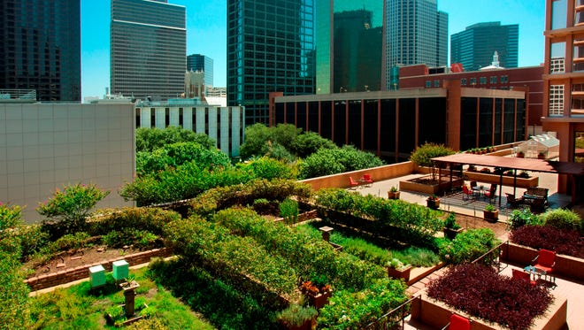 The Pyramid Restaurant in the Fairmont Hotel in Dallas boasts local, sustainable American cuisine, using fresh ingredients from a terrace garden.