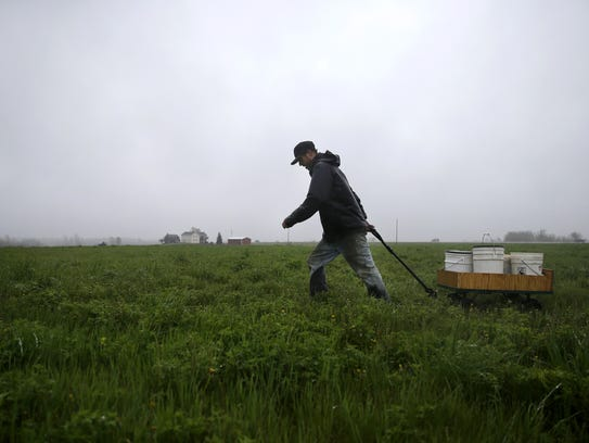 Justin Duell hauls water and feed to his chickens while