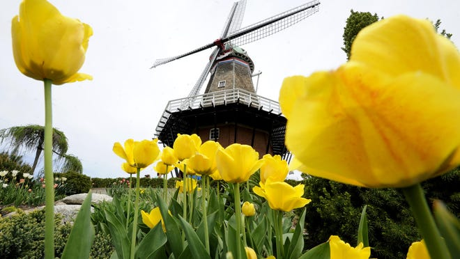 There's lots to do in Michigan in May. Take it all in.