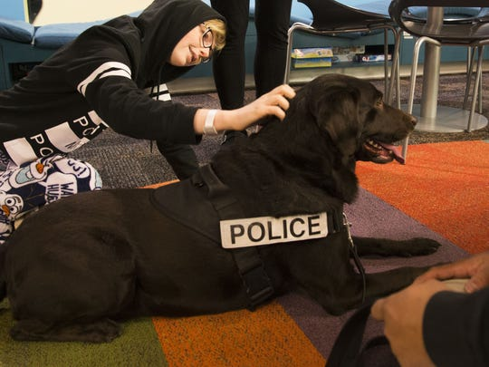Karelle Reid Hoefer plays with bomb sniffing dog Kira