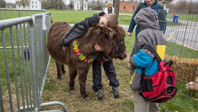 Michigamme third-grade student Drake Sullivan, 9, hugs a donkey while petting animals with classmates during the Earth Day Fair Friday, April 29, 2016 at Goodells County Park.