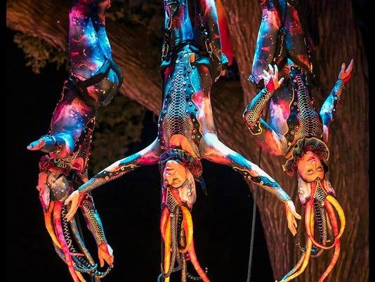 636549874656312740-Cycropia---Tree-Show.jpg
