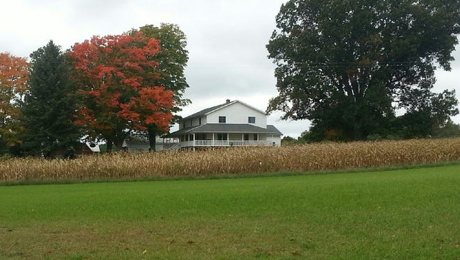 Autumn is showing signs of welcome color near Lovina and Joe's farm.