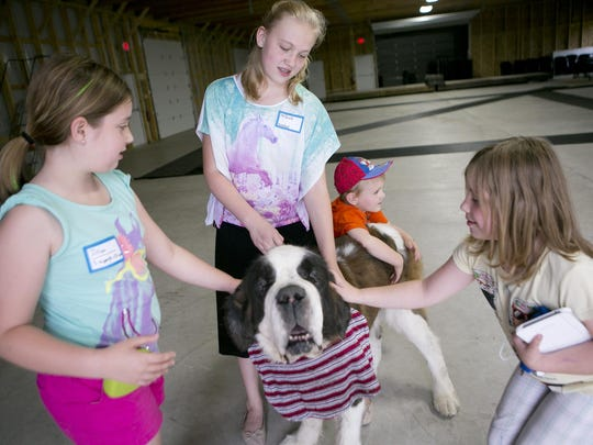 From left, Jillian Plummer, 10, of Stevens Point, Mikala Seymour, 14, of Plainfield, Johnny Seymour, 4, and Ella Plummer, 7, pet Mikala's dog, Korbel, a Saint Bernard on Wednesday before a training session for the Portage County 4-H Dog Project at the Amherst Fairgrounds.