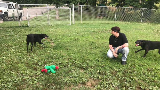 """Kristin Reid, who began serving as Cheatham County Animal Control director June 18, plays with labrador mix puppies Macy and Sally at animal control on Thursday, June 28. She said seeing how they've progressed in their care makes """"every little bit of what we do absolutely worth it."""""""