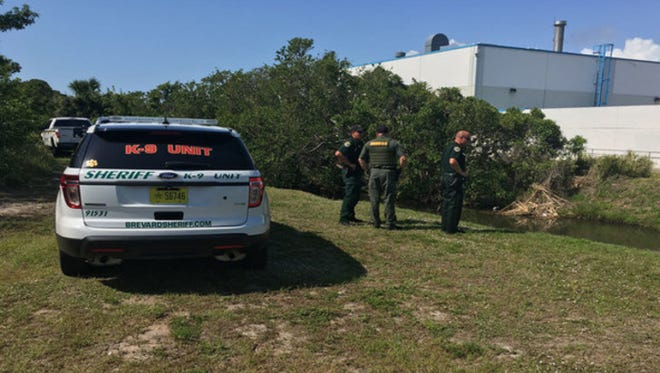 Deputies were looking for a man who stabbed his girlfriend Thursday morning in Cape Canaveral.