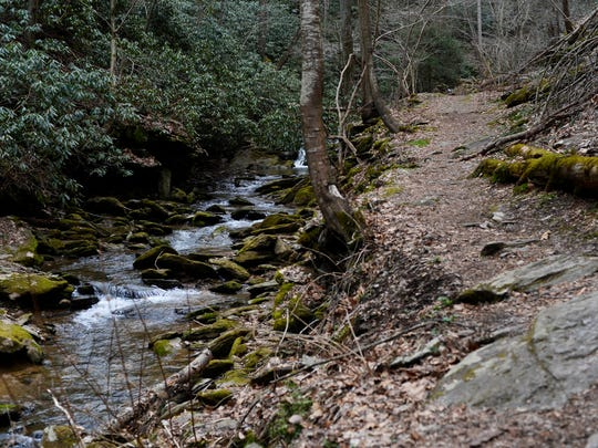 The Mason-Dixon Trail runs right next to the Mill Creek falls, making for a beautiful short hike.
