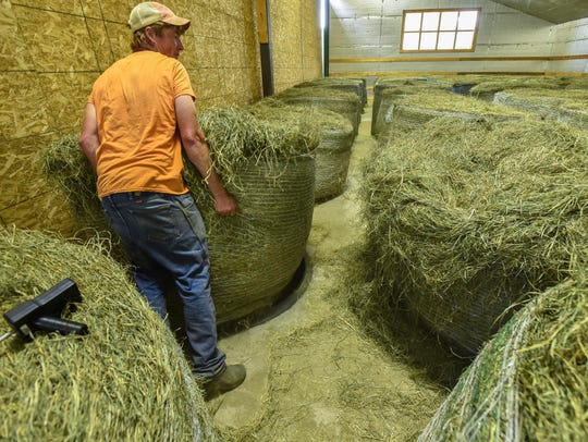Farmer James Coe moves a bale of hay over a vent in