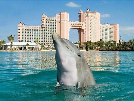 Caribbean Resort Photo Tour Atlantis Paradise Island