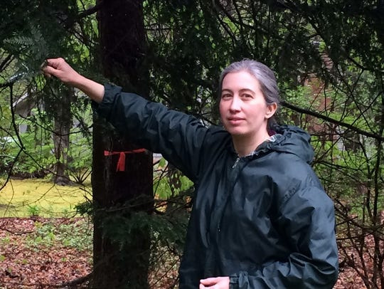 Estelle Charroud stands near an infested hemlock tree