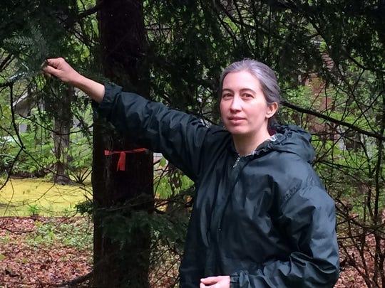 Estelle Charroud stands near an infested hemlock tree