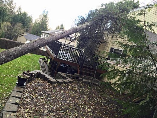 More Than 370 000 Lose Power In Western Wash Wind Storm
