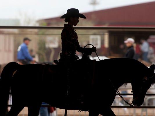 0215110206sh horseshow0219