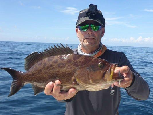 636341792703622401-grouper-hinck.jpg