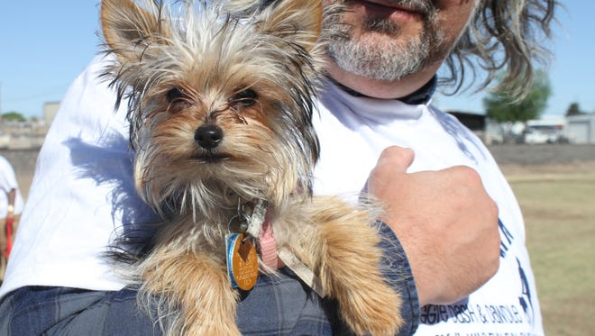 Dave Rogers, who was the emcee of Bark in the Park, hold six-month-old Annie.