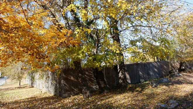 A vacant lot on the corner of Taylors Lane and Shadown Lane in Mamaroneck on Nov. 4.