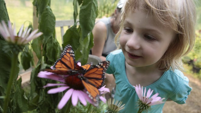 Kate Hopkins and her daughter Elsa, 4, of Larchmont enjoy the Greenburgh Nature Center's butterflies exhibition which features the Monarch butterfly on July 5, 2015. The nature center is among a host of nonprofits hoping for help on Giving Tuesday.