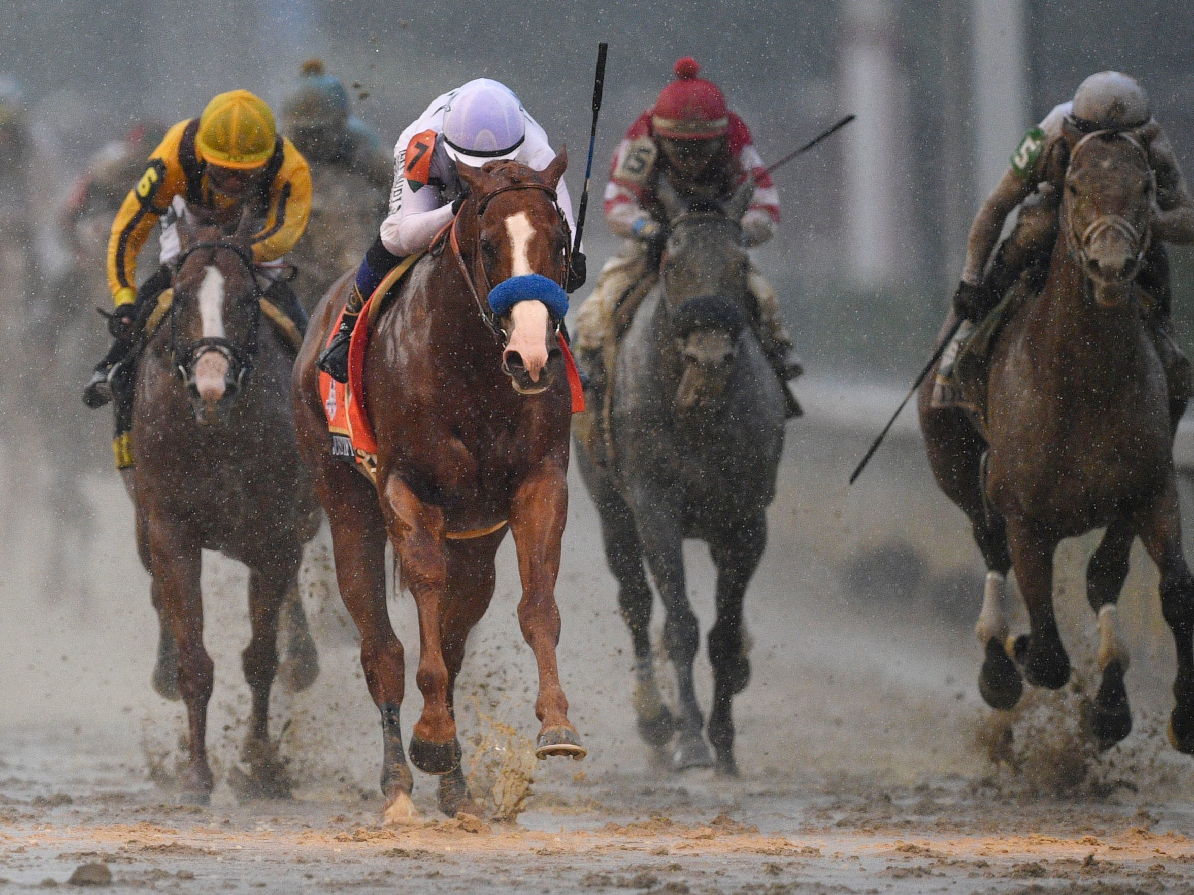Nearly $385 million was wagered on horse and dog racing in Texas in 2017.