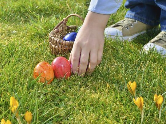 Easter egg hunt stock image.