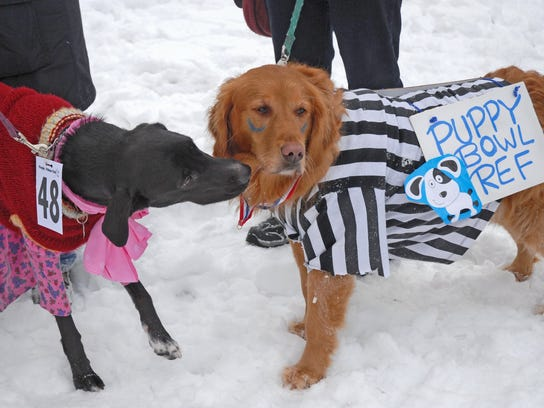 The Fourth Annual WinterFest and Doggie Fashion Parade