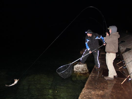 Joe Murphy (right) of Waukesha reels in a 31-inch walleye as Wally Laviolette of Sturgeon Bay prepares to net the fish while fishing from shore near Sturgeon Bay