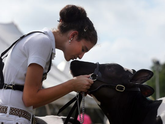"""Second day of Somerset County 4-H Fair held at North Brach Park in Bridgewater on Thursday August 11, 2016.Here Ariel Staffin of Bridgewater shares a tender moment with her cow """"Lolli""""before entering the show ring for the Dairy Show during the second day of the fair."""