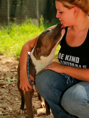 Anna Yendes, with Castaway Animal Rescue Effort, plays with Jillian, a pit bull who was rescued from the city's animal shelter.