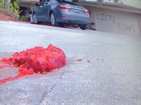 Screenshot taken of a WINK News: A look at the pigs feet left on the driveway at the vandalized home of the Minnesota dentist who killed Cecil the lion.