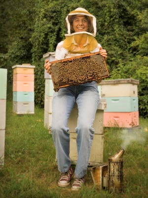Beekeeper and bee hives