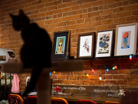 River Kitty Cat Cafe, seen here in downtown Evansville, Ind., on Tuesday, Nov. 21, 2017, will have Santa Claus visiting the store from 1-3 p.m. and carols from 3-5 p.m. on Small Business Saturday, Nov. 25, 2017.