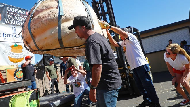 Judges inspect the first-place pumpkin in the 45th annual Safeway World Championship Pumpkin Weigh-Off on Monday, Oct. 8, 2018, in Half Moon Bay, California. A commercial pilot from Oregon raised a giant pumpkin weighing 2,170 pounds (984 kilograms) to win a pumpkin-weighing contest in Northern California. Steve Daletas credited a good seed and lots of sunny days since he planted it April 15. It is the fourth time Daletas took top honors at the annual pumpkin-weighing contest.