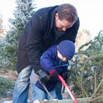 2016 Christmas Tree Farms in Southeastern Wisconsin