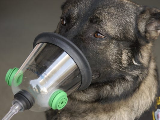 636561124780147984-US-NEWS-PETS-OXYGENMASK-TB.jpg