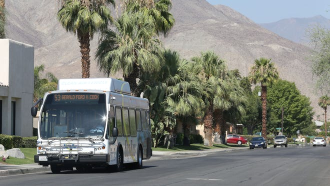Tom Hartland discusses how a hot day at the bus stop can be a life-affirming event.
