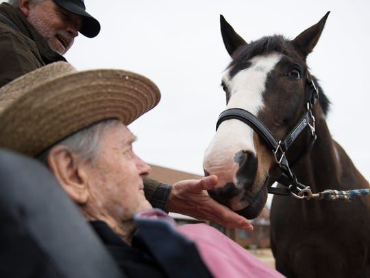 Dr. John B. Martin Jr. gets a visit from a horse named Pierre at Clemson Downs on Tuesday, March 25, 2018. Dr Martin, who is in hospice care, used to breed and train quarter horses.