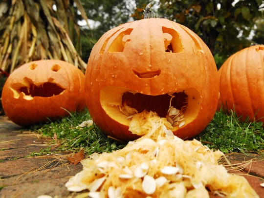 Pumpkins carved in the past for The Great Pumpkin Glow