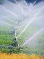 Farm advocates question how FDA regulators will determine water quality used on produce imported into the U.S.