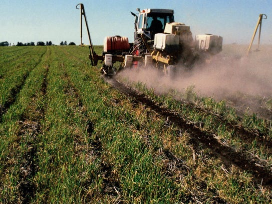 The growing cover crop protects the soil by forming