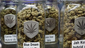 Sessions to go after pot industry