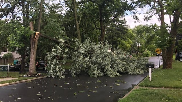 The aftermath of Saturday morning's storm in Gloucester Township, where damage overall was relatively small.