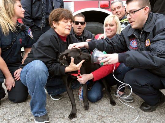 Woodhaven city Mayor Patricia Odette holds Jacket, a rescued labrador mix pupp,y at the Woodhaven /Trenton Animal Shelter as Woodhaven firefighter Kris Nelson demonstrates the pet oxygen mask.