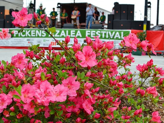 The Annual Pickens Azalea Festival Saturday, April