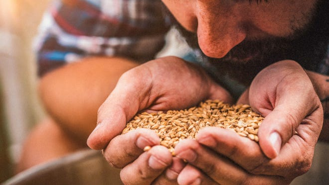 Whole grains contain key nutrients that are essential to a properly functioning immune system.